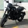 Leoncino500T